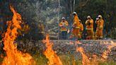 【國家有難,總理度假】莫里森無力解決澳洲大火危機 視察災區「人民拒絕握手」