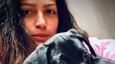 Matthew McConaughey and Camila Alves Adopt a Second Puppy in a Week: 'Got Work Cut Out for Me'