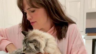 Jennifer Garner Buys Hilarious Feline-Holding Sweatshirt for Her Cat: Moose 'Cativated My Heart'