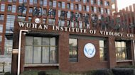 Calls to investigate Wuhan lab grow in search for answers on COVID-19 origins
