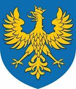 Casimir of Koźle