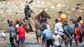 OnPolitics: Horse patrols are temporarily suspended