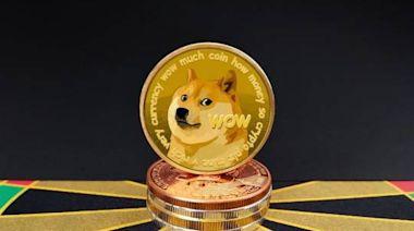 狗狗幣「追星場」:有人握7萬枚賭漲,大V收費萬元群推潛力幣