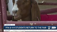 FFA and 4-H students excited to return to the fair this year