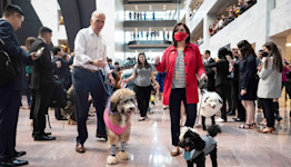 A Republican Senator Dressed His Dogs as Kyrsten Sinema and Mitch McConnell for Halloween