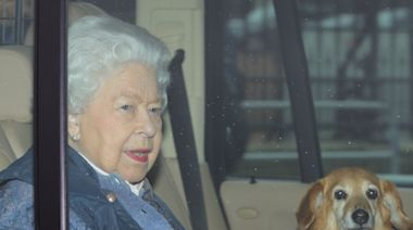 Queen left with just one dog after her dorgi Vulcan dies