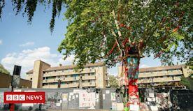Tree of the Year: Hackney tree set to be felled wins award