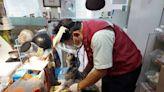 飼主確診被收治 新北動保處獸醫助視訊人犬均獲安慰