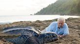 Sir David Attenborough breaks Jennifer Aniston's Instagram record