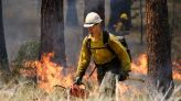 Oregon governor signs bill to explore liability changes for prescribed fire