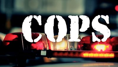'Cops' Revival Picked Up by Fox Nation