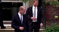 Harry and William put feud aside, unveil Di statue