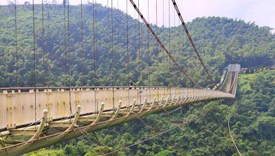 【嘉義】太平雲梯:漫步全台最高海拔景觀吊橋,優惠門票、交通停車&美食攻略 - SayDigi | 點子生活