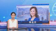 陳凱欣就劉小麗選舉呈請案終院提上訴