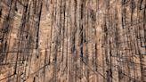 Drone photos show massive brush fire destruction