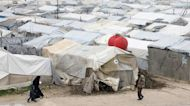 Syrian government confiscated opponents' land, says HRW