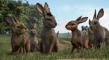 Netflix's Watership Down Is Not (Really) for Kids—And That's a Good Thing