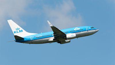 KLM stops UK flights as Britain battles more 'deadly' COVID-19 strain