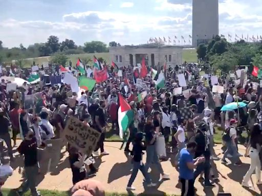 Thousands Stand In Solidarity With Palestine In Rallies Held Across U.S., Cities Worldwide