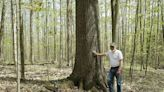 Nonprofit preserves 528 acres of land in Southwest Twp