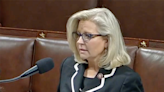 'Shocking and indefensible': Liz Cheney blasts Steve Bannon's comments on the House floor