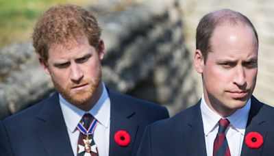 "Prince Harry and Prince William Have Been Arguing for ""Past Year and a Half,"" Tom Bradby Says"