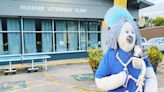 Shopper Blog: Sevier Avenue businesses scare up good times this Halloween