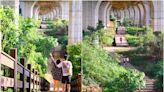 國道三號下的萬里長城~台中海線景點「沙鹿休閒景觀步道」,親子拍照散步運動好地方