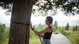 Pricey Housing Causes Jackson Hole Workers to Live in Forest | Wyoming News | US News
