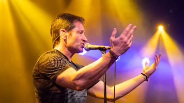 This Election, David Duchovny Wants to Go on Record
