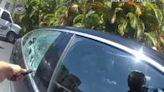 Sarasota police officers break window to rescue dog locked in 115-degree car