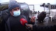 Sea lion crashes interview about 'plague of sea lions'