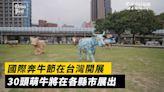 國際奔牛節在台灣開展 30頭萌牛將在各縣市展出 | CowParade goes on tour around Taiwan | The China Post, Taiwan