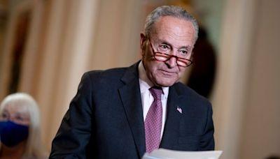 Senate Democrats Plan Vote Next Week on Voting Measure
