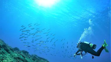 潛水、水域活動適度鬆綁 屏東墾丁業者歡呼:如釋重負