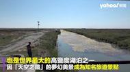土耳其夢幻鹽湖傳生態悲劇 逾千隻紅鶴疑渴死陳屍湖底