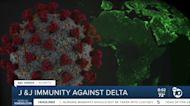Johnson & Johnson's effectivness against Delta