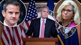 Kevin McCarthy calls out Adam Kinzinger, Liz Cheney over Capitol riot committee
