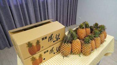 鳳梨正盛產 新竹市農會與台南關廟合作促銷