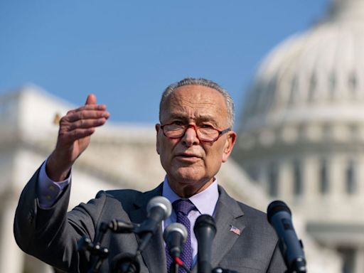 Chuck Schumer calls out Biden for dragging his feet on the student debt crisis: 'Students don't need their debts paused - they need it erased'
