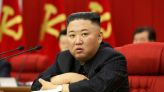 North Korea's currency, commodity markets in turmoil as borders stay closed - reports