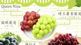 「晴王麝香葡萄」貴在哪?1 張圖秒懂日本 5 大人氣葡萄 - 食譜自由配 - 自由電子報