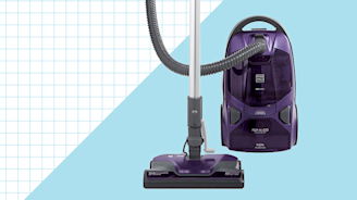 Our Pros Say These Canister Vacs Are the Best for Deep Cleaning