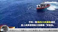 美海巡隊40人下海戲水2.5米巨鯊逼近 船上同袍狂轟數槍驅離