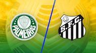 Match Highlights: Palmeiras vs. Santos