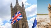 香港人移民懶人包 2020 : 台灣、英國、日本、新加坡、澳洲申請條件要求及費用