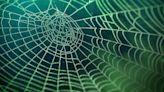 Is the Dark Web Illegal?