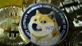 Elon Musk, dogecoin craze add to heightened demand for Shiba Inu dogs