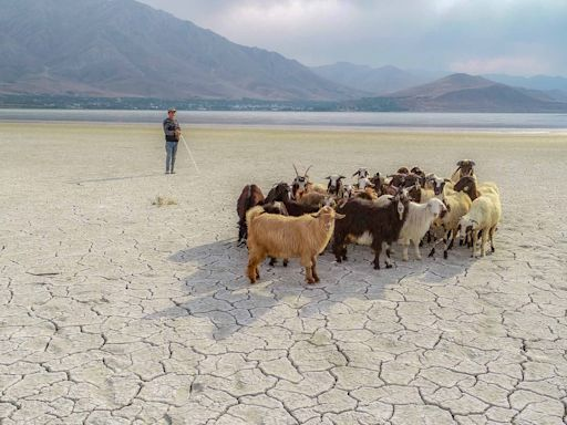 如何在極端的未來求存?關於天災與氣候危機的十問十答|端傳媒 Initium Media