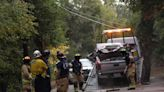 Felton Man Killed by Falling Tree While Driving - Press Banner